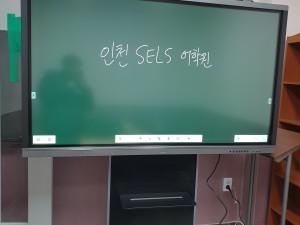 인천 SELS 어학원 65인치
